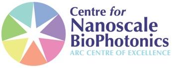 Nanoscale BioPhotonics Workshop