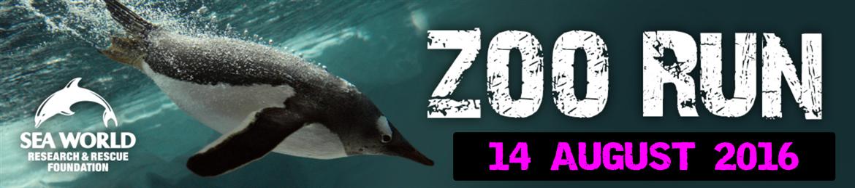 2016 ZOO RUN @ Sea World