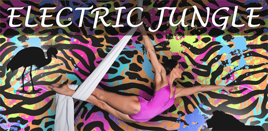 ELECTRIC JUNGLE - Aerial Artistry® Pro Show